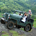 Jeep safari to Gavi Sanctuary